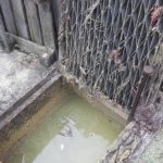Blocked stormwater pit