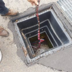 Objects we find in drains